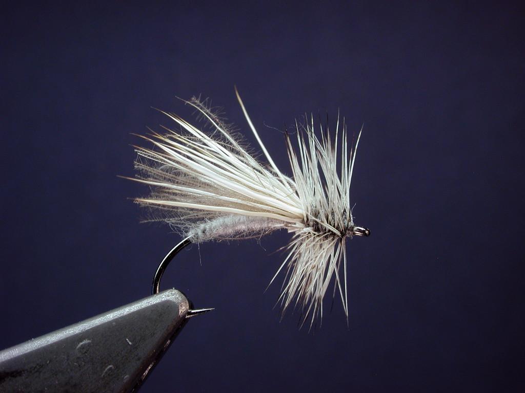 silversedge